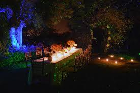 Landscape Laser Lights Blisslights Landscape Eclectic With Bliss Light Blisslights