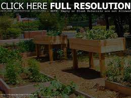 raised bed gardening plans home outdoor decoration