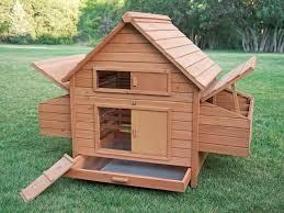 the 10 best cheap chicken coops online zacs garden