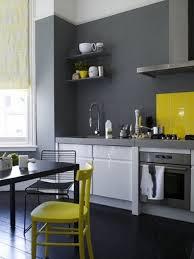 gray kitchen cabinets yellow walls gray and yellow kitchens