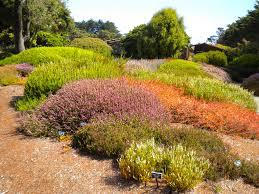 Fort Bragg Botanical Garden 10 Reasons To Visit The Mendocino Coast Botanical Gardens Right