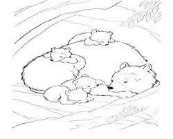 coloring pages animals hibernating hibernation coloring pages hibernation coloring pages hibernating