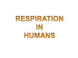 best 25 anaerobic respiration ideas on pinterest cell biology