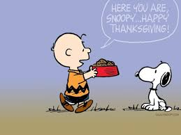 peanuts images thanksgiving hd wallpaper and background photos 452775