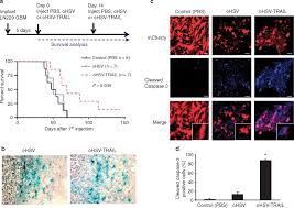 multimechanistic tumor targeted oncolytic virus overcomes