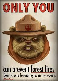 Ewok Memes - meme classics only you can prevent forest fires ewok version