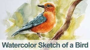 watercolor painting bird demo youtube