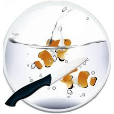 planche a decouper verre cuisine planche à découper en verre personnalisée avec une photo cadeau cuisine