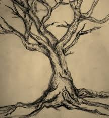 the 25 best tree drawings pencil ideas on pinterest pencil art