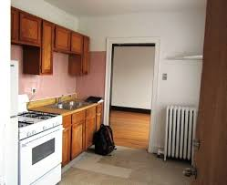 chicago 1 bedroom apartments 1 bedroom chicago apartment for rent rentals chicago il