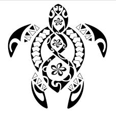 turtle polynesian pencil and in color turtle polynesian