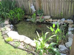garden pond fish tags backyard ponds self stick backsplash self