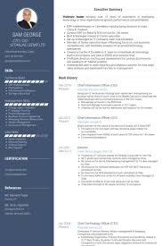 Visual Resume Examples Cto Resume Examples Download Cto Resume Examples It Resume