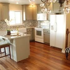 luxury kitchen paint ideas with white appliances