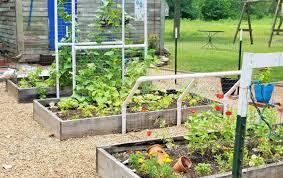 garden u2013 phillipsplace
