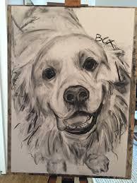 golden retriever charcoal she draws animals
