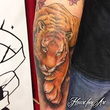 danny s version of a japanese tiger for