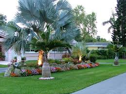 Landscaping Company In Miami by Basil Green Landscaping Professional Lawn Care Company