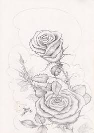rose rose drawings page 68 of 114 fine art america