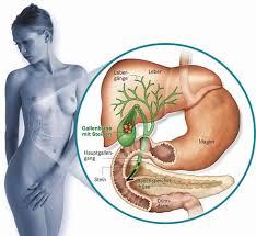 leberschwäche symptome gallensteine cholelithiasis apotheken umschau