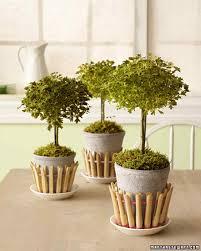 indoor plant pot decoration ideas zandalus net