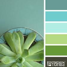 complementary of pink pinterest deco nature avec ideas about aqua color schemes on