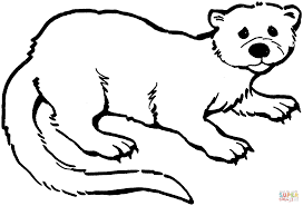 otter 3 coloring page free printable coloring pages