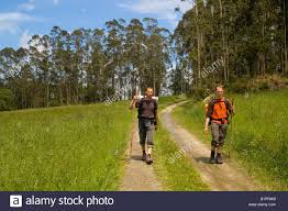 the way of the pilgrim pilgrim walking the way of or camino de santiago