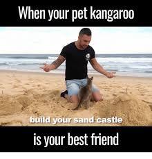 Sand Meme - 25 best memes about sand castle sand castle memes