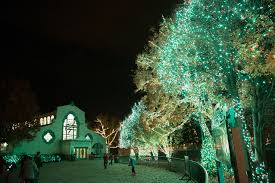 when does the lights at the toledo zoo start night lights