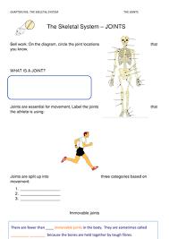 gcse pe skeletal system joints worksheet by gemmataylor89