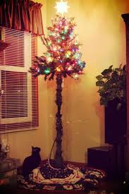 24 best cat proofing the tree images on
