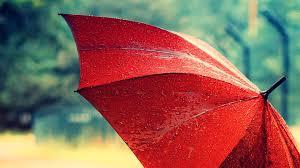 beautiful red umbrella wallpaper desktop 8200 wallpaper