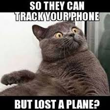 Malaysia Airlines Meme - funny malaysian airlines 3