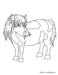 pony coloring pages hellokids com