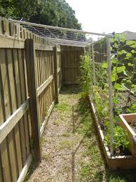 Pvc Pipe Trellis Best 25 Cheap Trellis Ideas On Pinterest Garden Works Yard Diy
