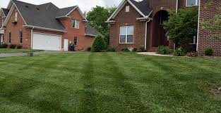 landscaper lawn care water feature installation bowling green ky