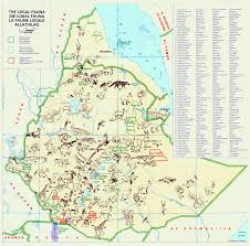 Ethiopia World Map by Large Detailed Local Fauna Map Of Ethiopia Ethiopia Africa