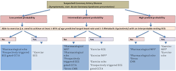 noninvasive imaging for the assessment of coronary artery disease