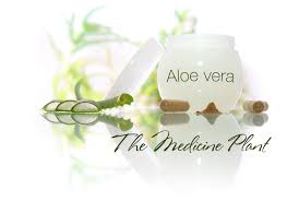 Cvr Pharmacy The Real History Of Aloe Vera By Clinton Howard Dr Aloe U0027s Original