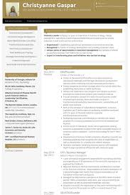 Princeton Resume Template Ceo U0026 Founder Resume Samples Visualcv Resume Samples Database
