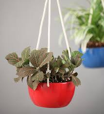 Hanging Ceramic Planter by Gaia Shop Home