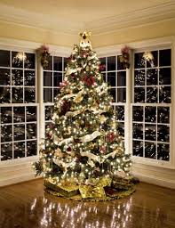 Decorated Christmas Trees Ideas Christmas Tree Decorating Ideas 2012 Home Design