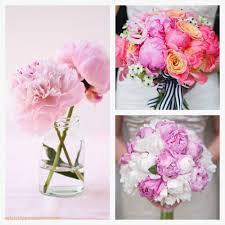 wedding flowers edmonton edmonton wedding flowers edmonton wedding flowers fresh