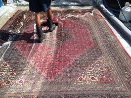 Area Rug Cleaning Tips 207 Best Steam Master Carpet Cleaning Images On Pinterest