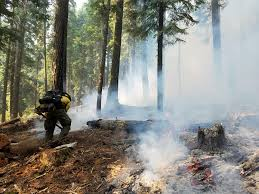 Wild Fires In Oregon Update by 2017 09 04 11 52 00 974 Cdt Jpeg