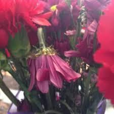 flowers jacksonville fl flowers by elaine closed 14 photos florists 144012 dunn