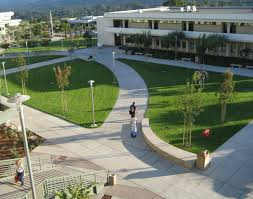 san mateo colleges study california