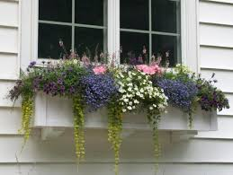 Hanging Planter Boxes by 129 Best Window Boxes Images On Pinterest Window Boxes Window