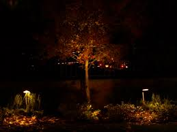 California Landscape Lighting Agoura Lighting Lighting Up Agoura California 91301